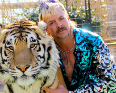 """The New """"Tiger King Law"""" Proposed to Protect Big Cats"""