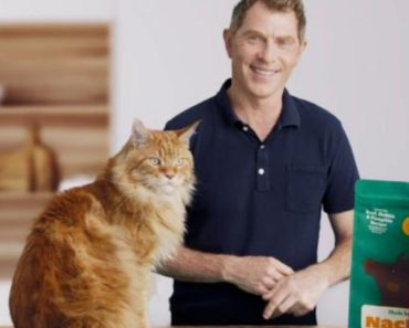 Bobby Flay Releasing A Pet Food Brand With His Cat Nacho