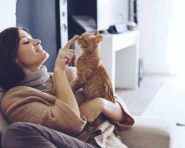 How Much Attention Do Cats Really Need?