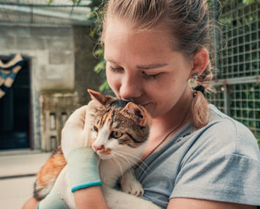 The 10 Best Charities for Cats